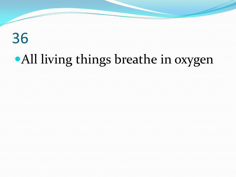36 All living things breathe in oxygen