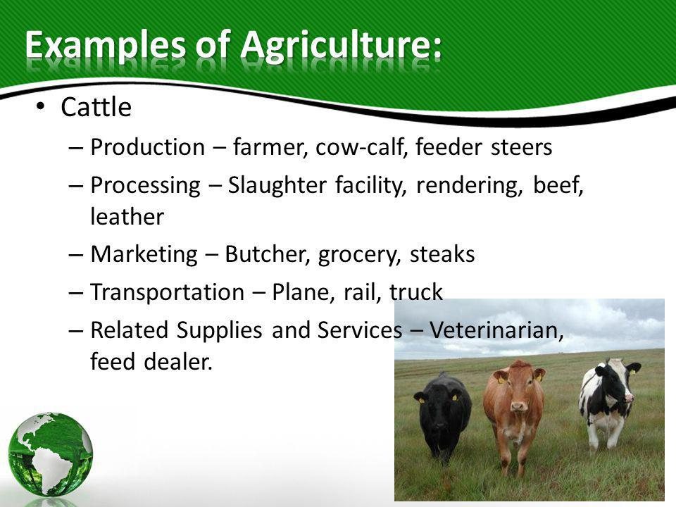 Examples of Agriculture: