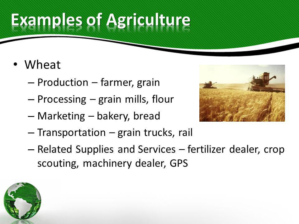 Examples of Agriculture