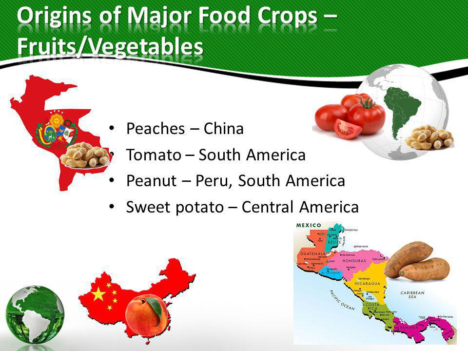Origins of Major Food Crops – Fruits/Vegetables