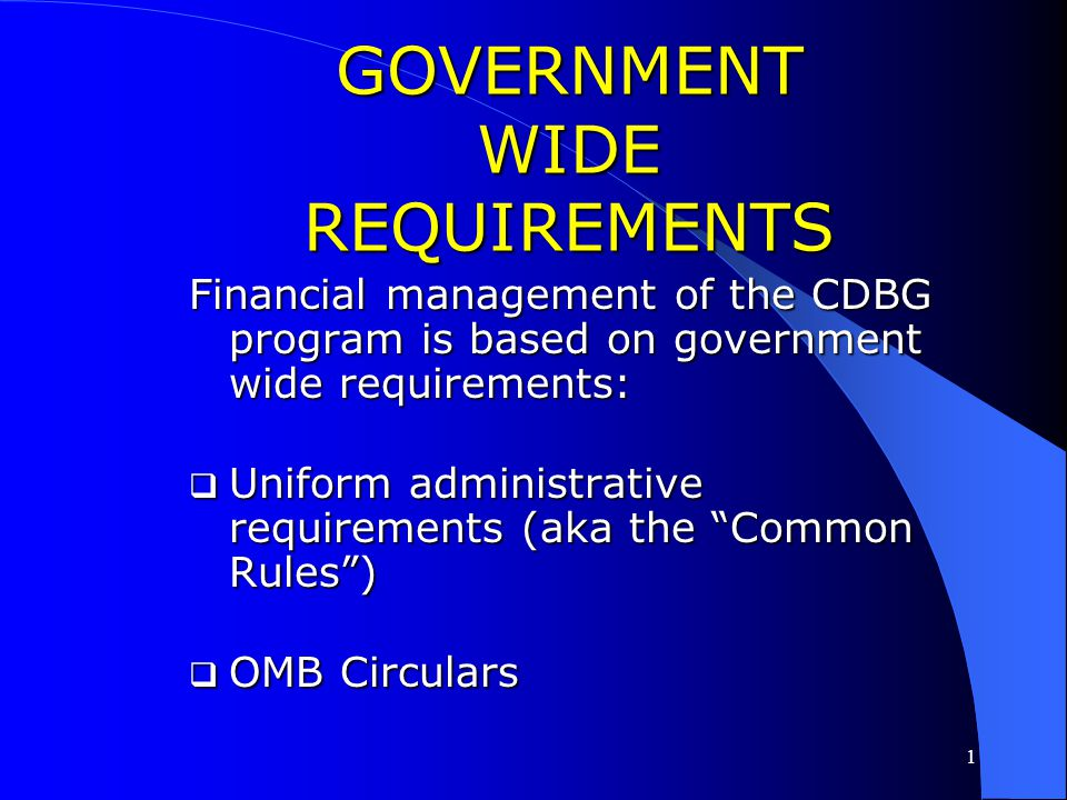 GOVERNMENT WIDE REQUIREMENTS