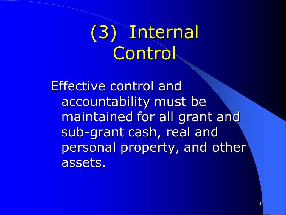 (3) Internal Control