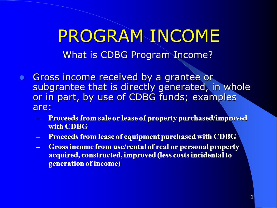 What is CDBG Program Income