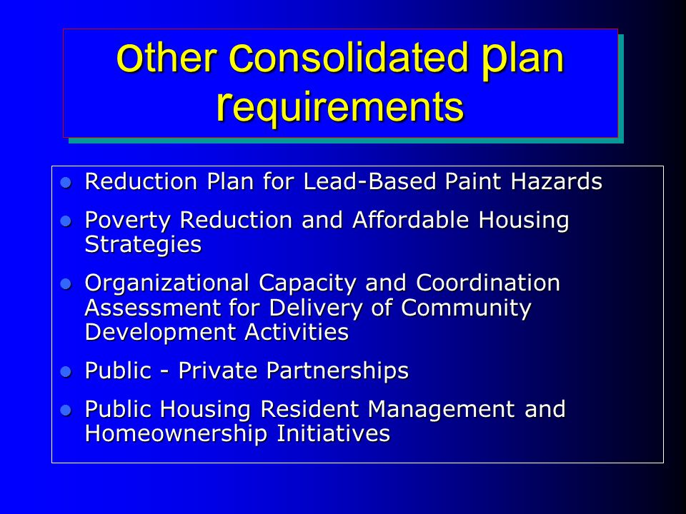 other consolidated plan requirements