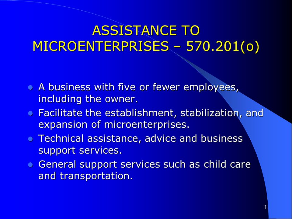 ASSISTANCE TO MICROENTERPRISES – 570.201(o)