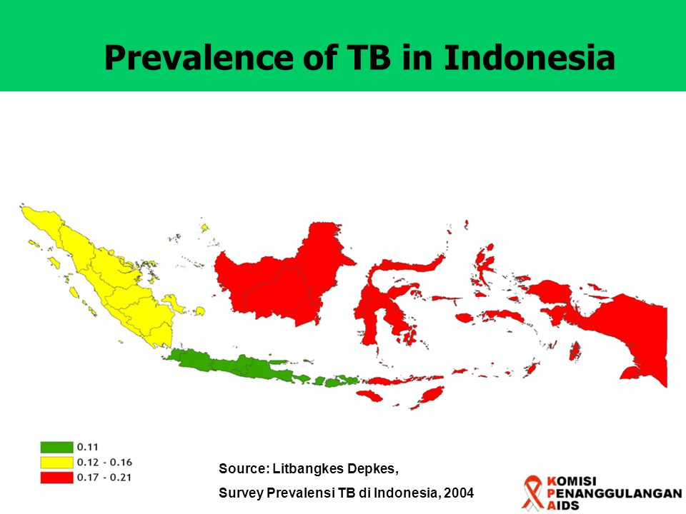 Prevalence of TB in Indonesia