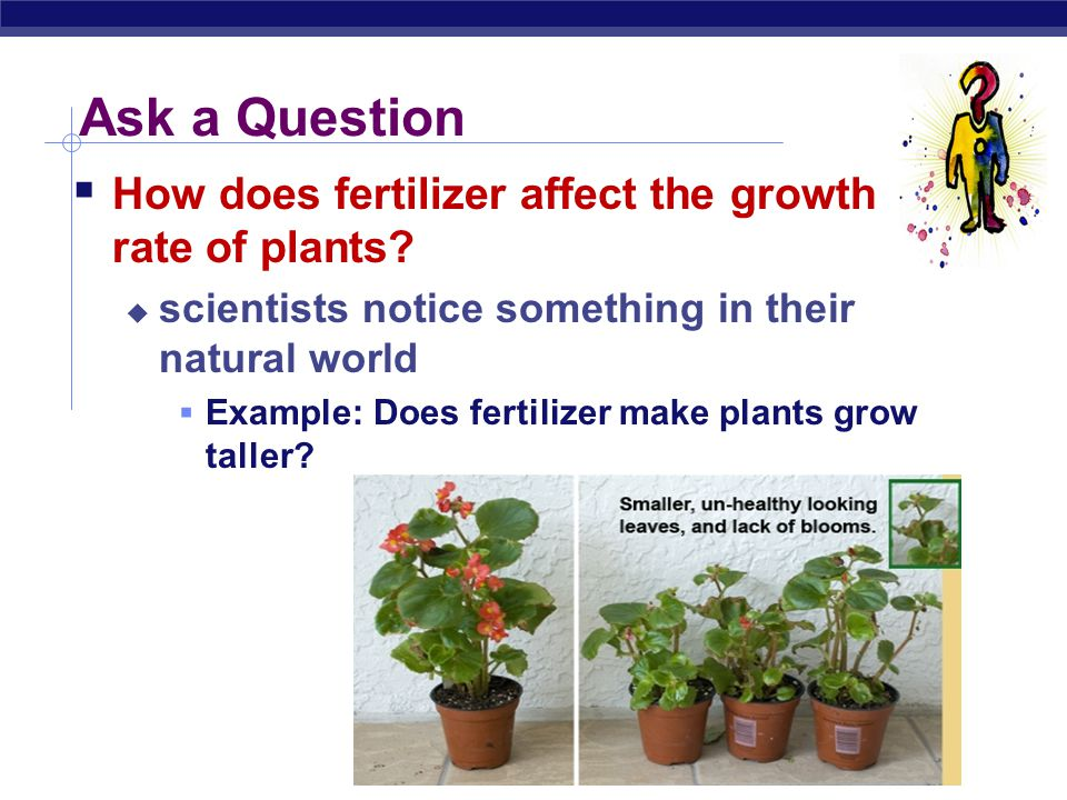 Ask a Question How does fertilizer affect the growth rate of plants