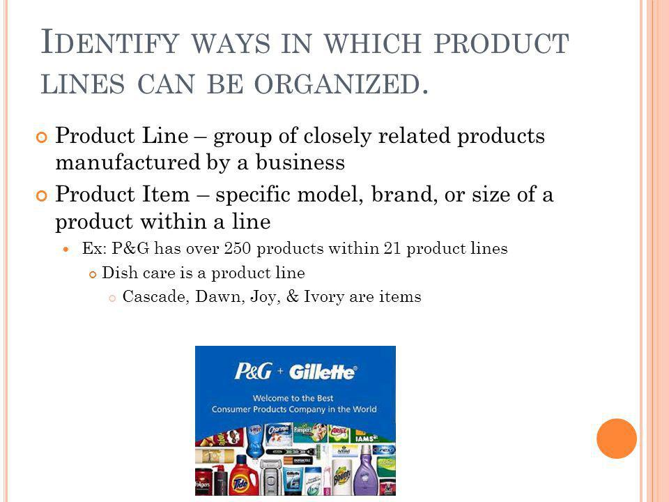 Identify ways in which product lines can be organized.