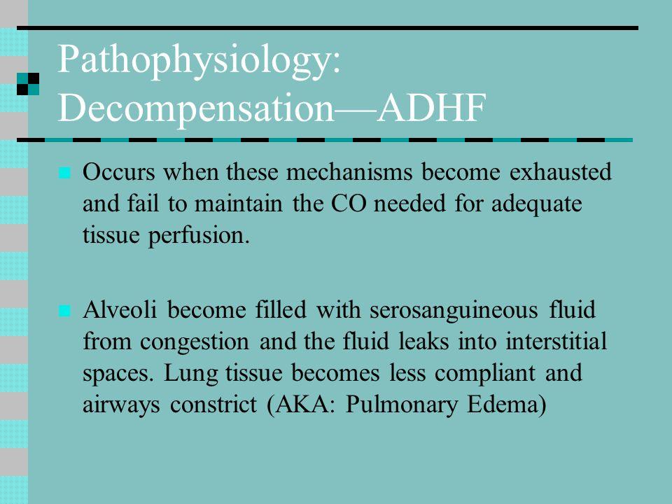 Pathophysiology: Decompensation—ADHF