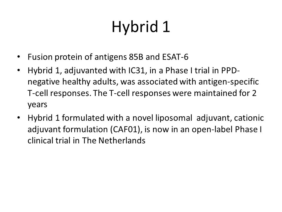 Hybrid 1 Fusion protein of antigens 85B and ESAT-6