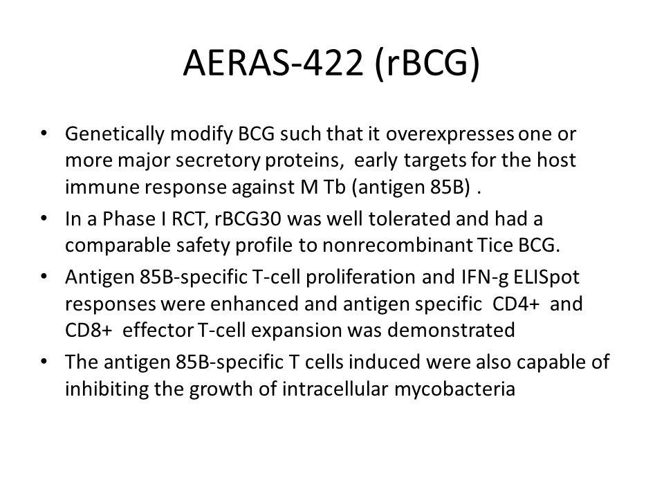 AERAS-422 (rBCG)