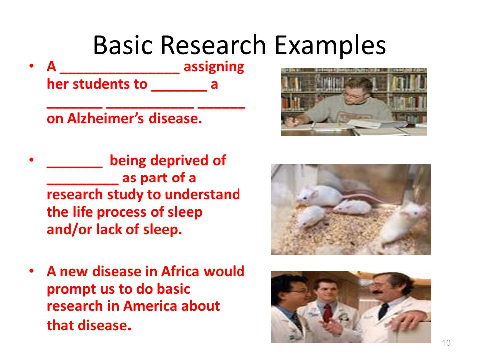 Basic Research Examples