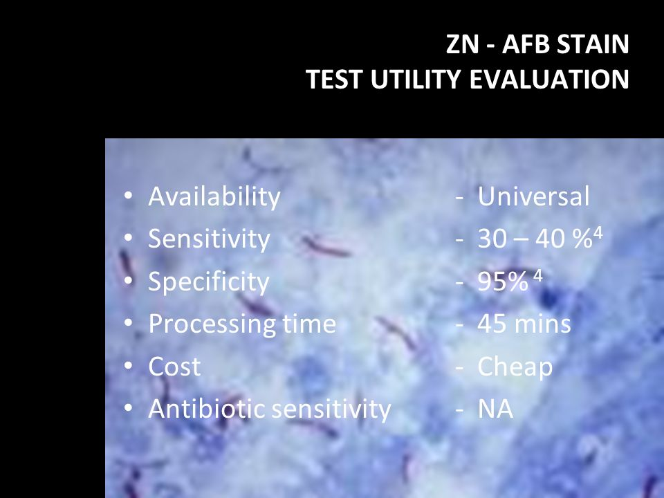 ZN - AFB STAIN TEST UTILITY EVALUATION