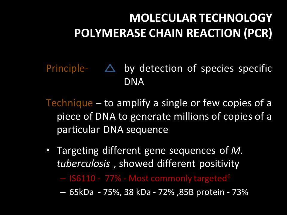 MOLECULAR TECHNOLOGY POLYMERASE CHAIN REACTION (PCR)