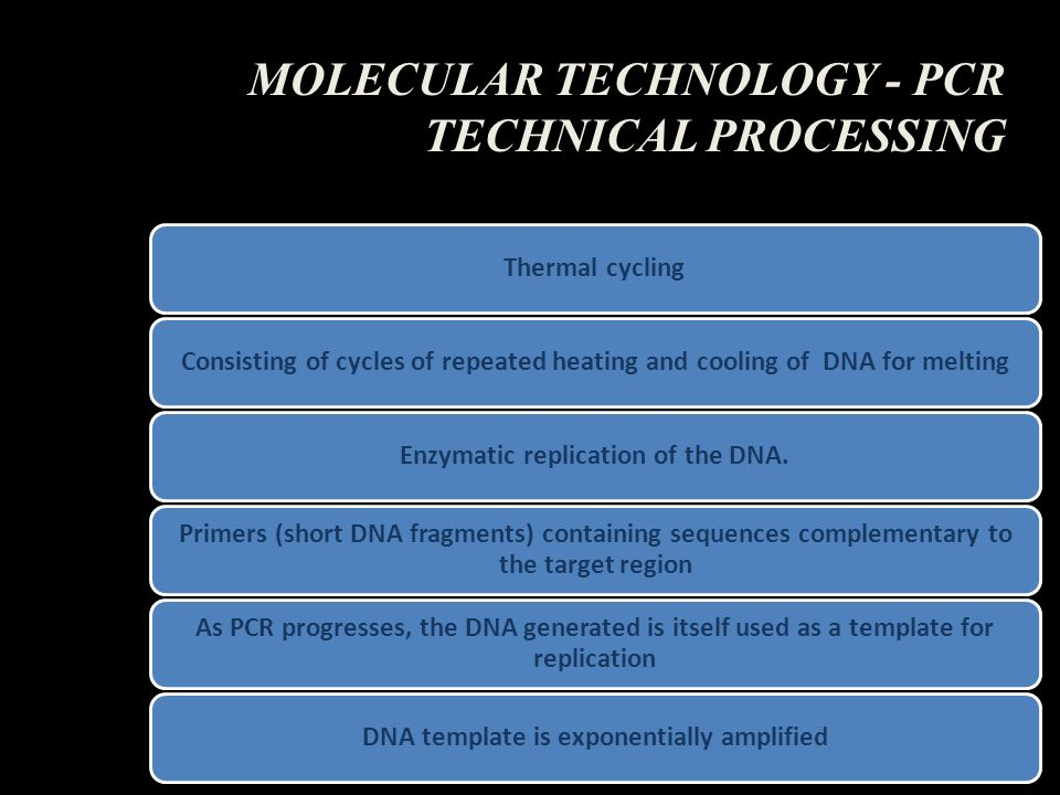 MOLECULAR TECHNOLOGY - PCR TECHNICAL PROCESSING