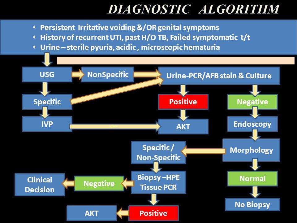 Urine-PCR/AFB stain & Culture