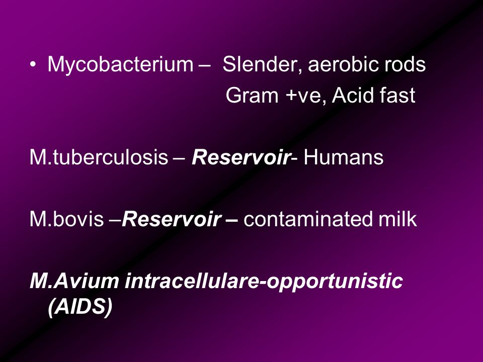 Mycobacterium – Slender, aerobic rods