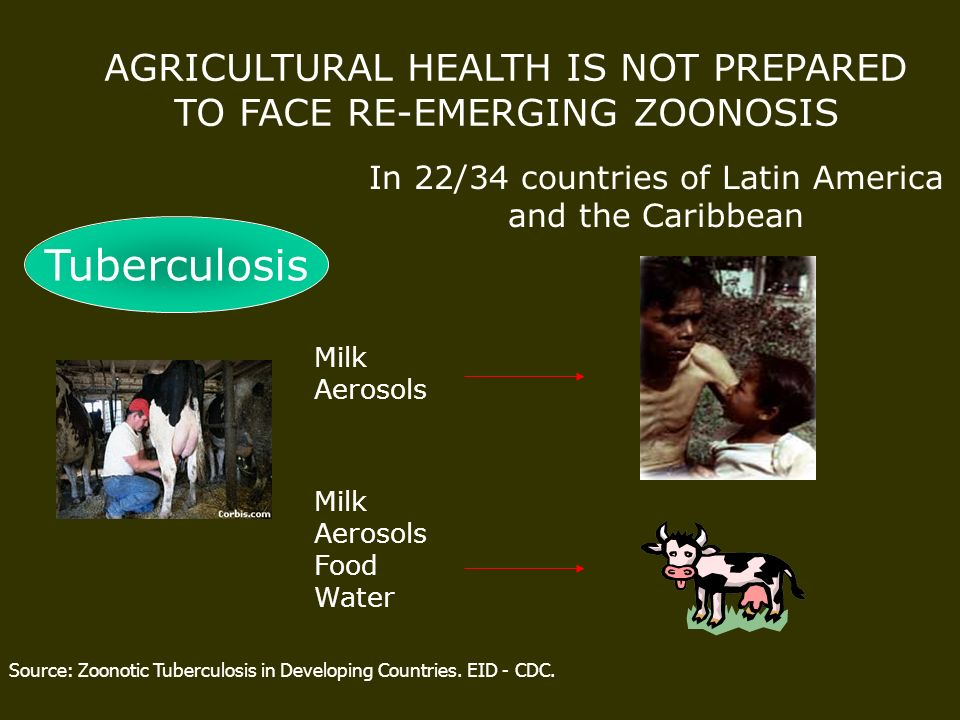 AGRICULTURAL HEALTH IS NOT PREPARED TO FACE RE-EMERGING ZOONOSIS