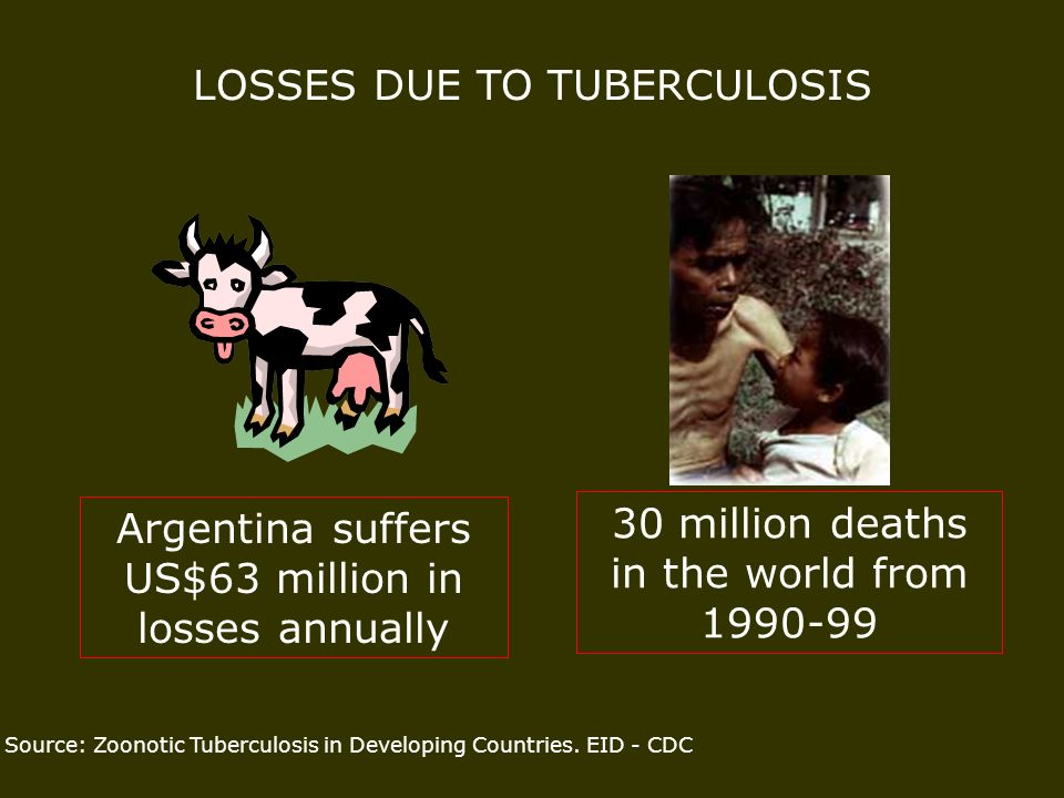 LOSSES DUE TO TUBERCULOSIS