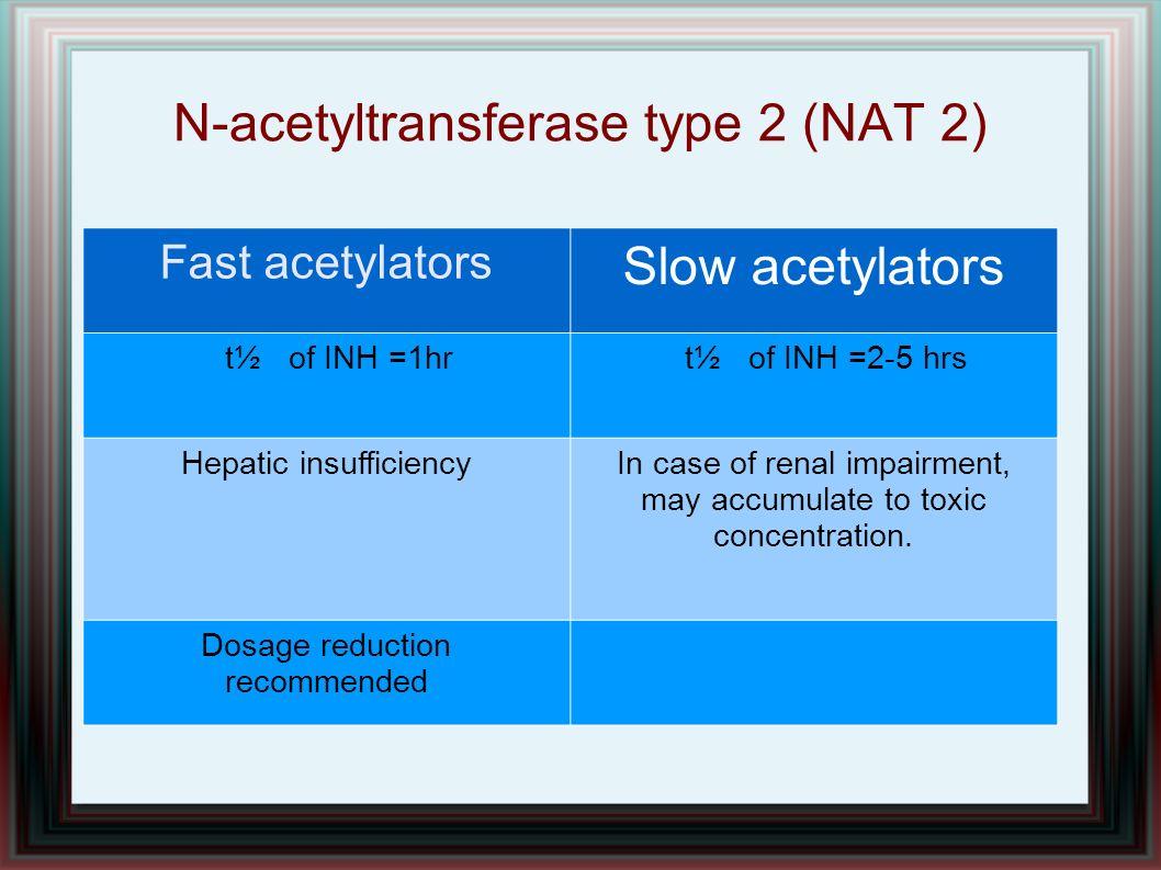 N-acetyltransferase type 2 (NAT 2)