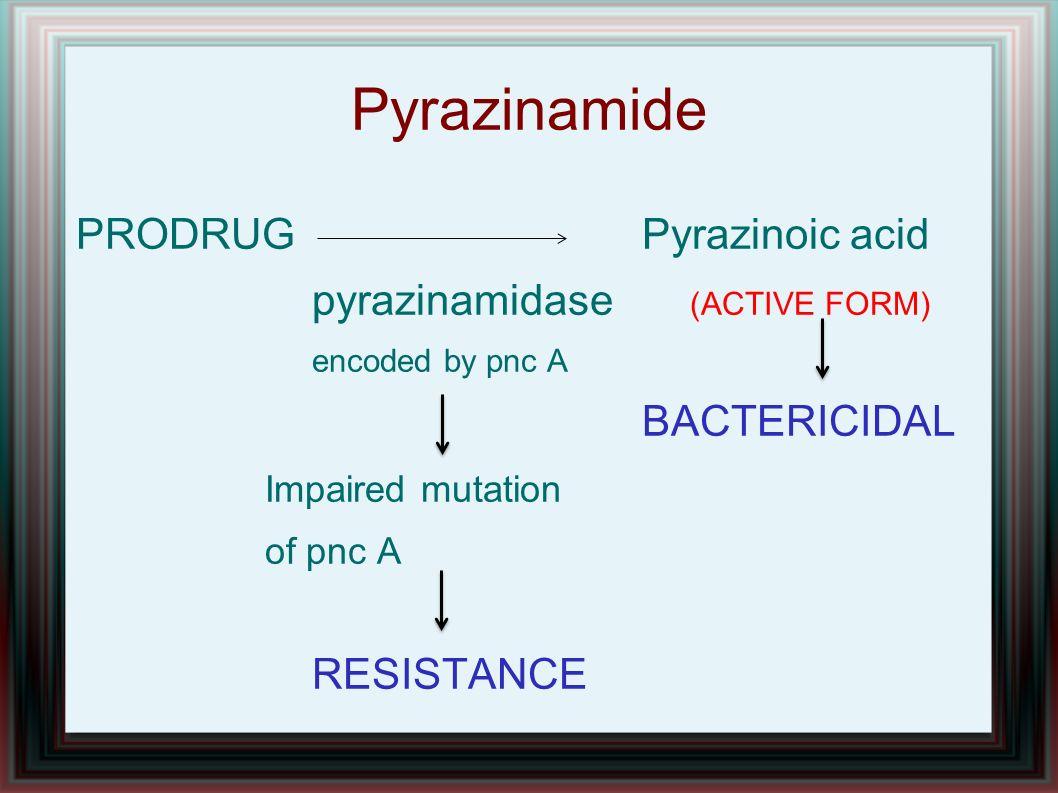 Pyrazinamide PRODRUG Pyrazinoic acid pyrazinamidase (ACTIVE FORM)