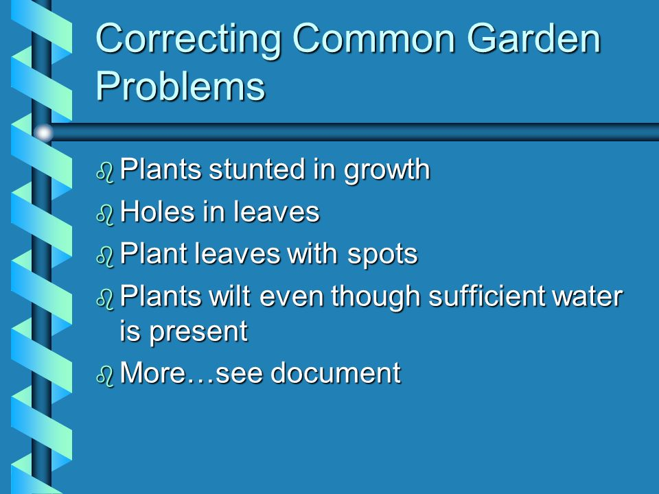 Correcting Common Garden Problems