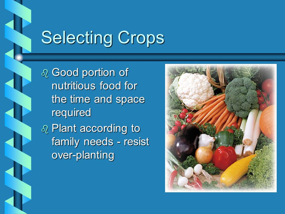 Selecting Crops Good portion of nutritious food for the time and space required.