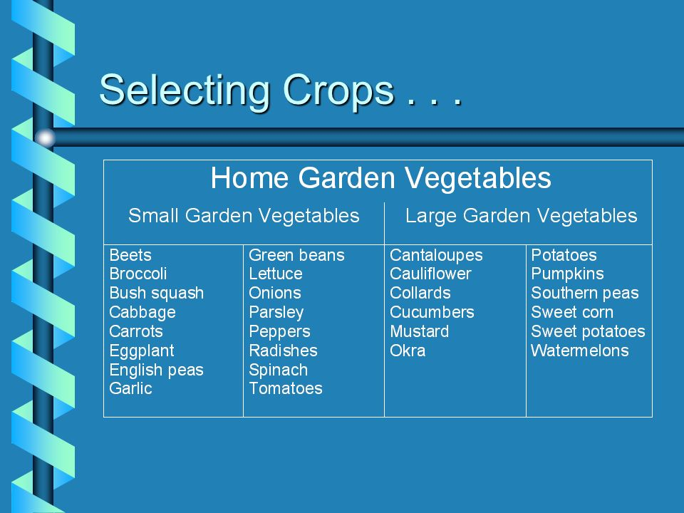 Selecting Crops . . .