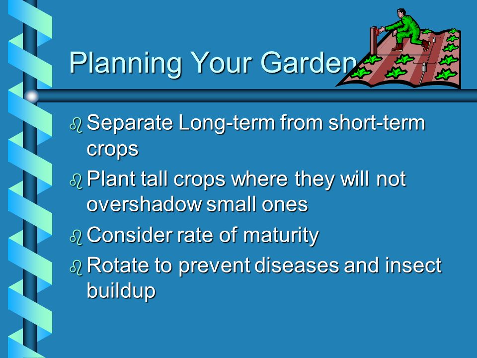 Planning Your Garden Separate Long-term from short-term crops