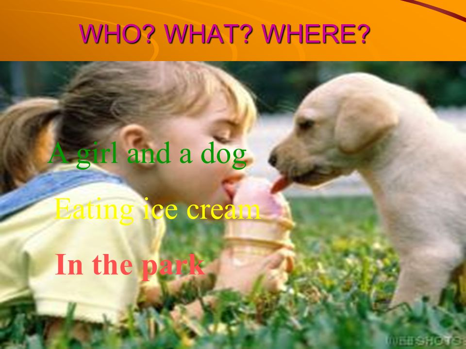 WHO WHAT WHERE A girl and a dog Eating ice cream In the park
