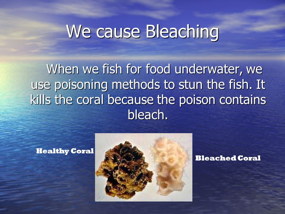 We cause Bleaching