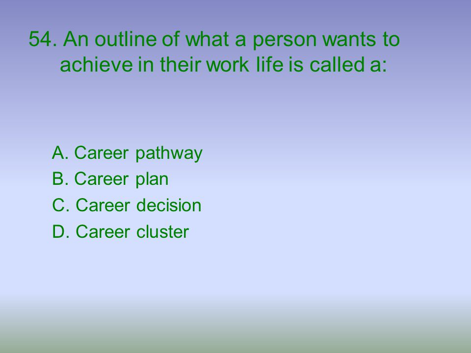 54. An outline of what a person wants to achieve in their work life is called a: