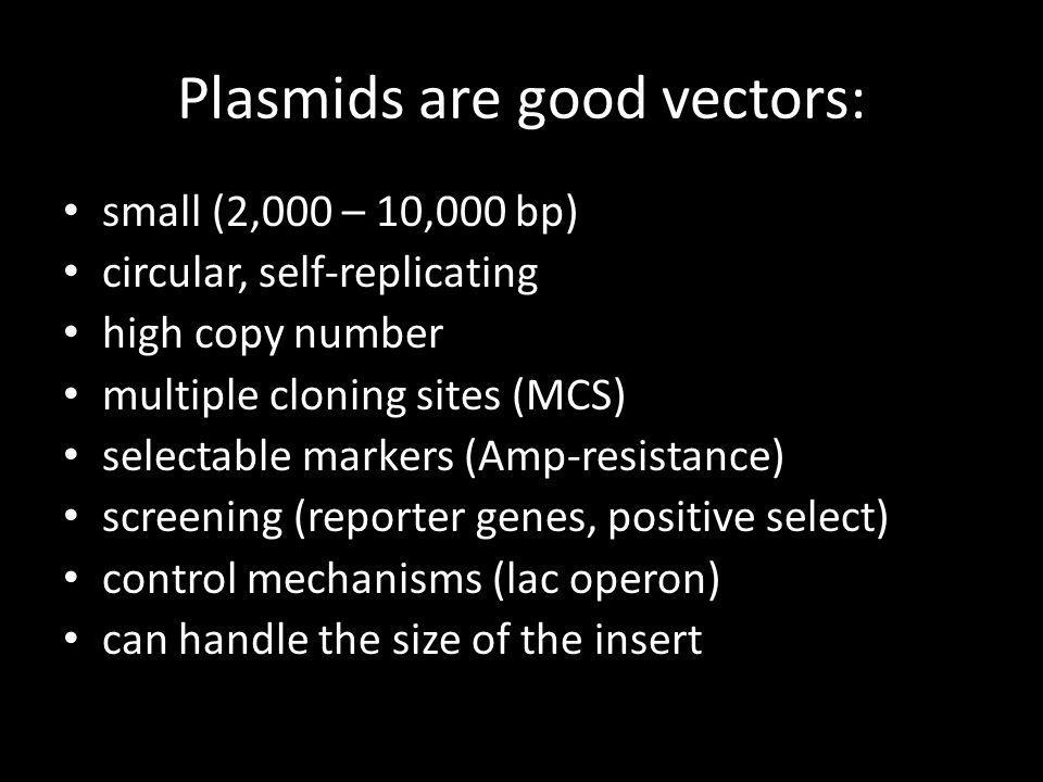 Plasmids are good vectors: