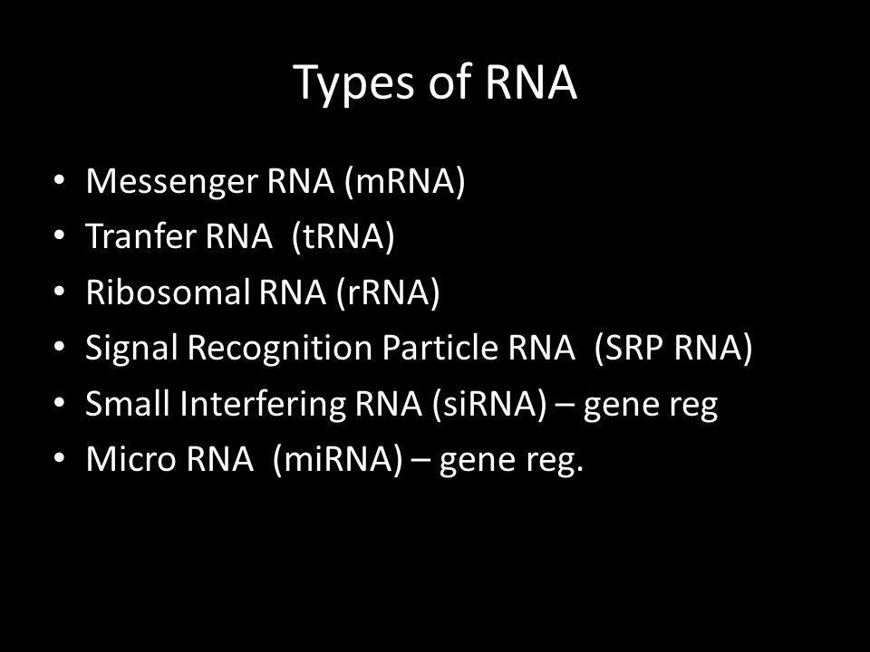 Types of RNA Messenger RNA (mRNA) Tranfer RNA (tRNA)