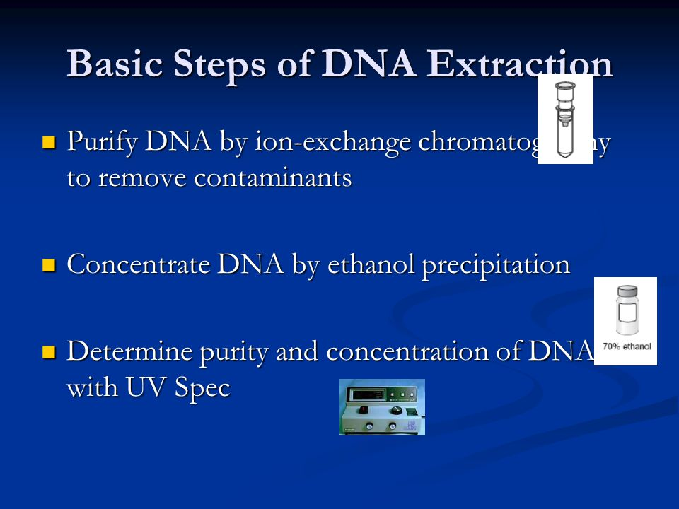 Basic Steps of DNA Extraction