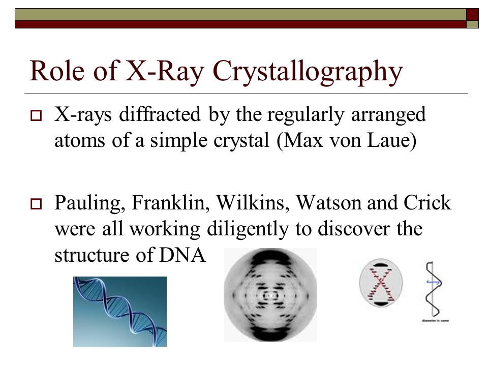 Role of X-Ray Crystallography