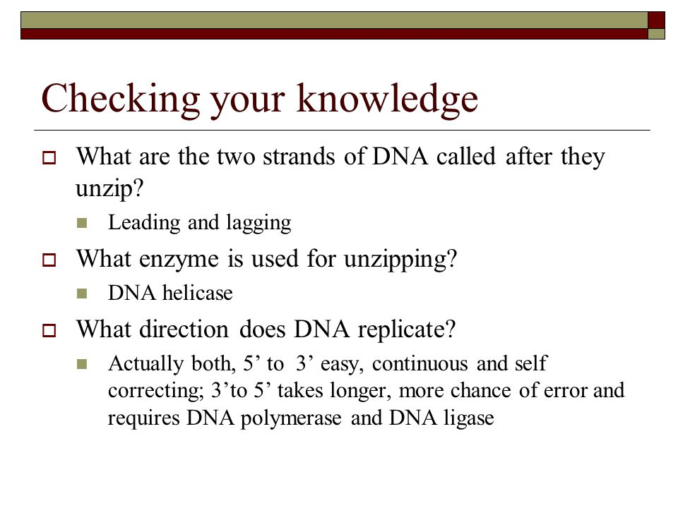 Checking your knowledge