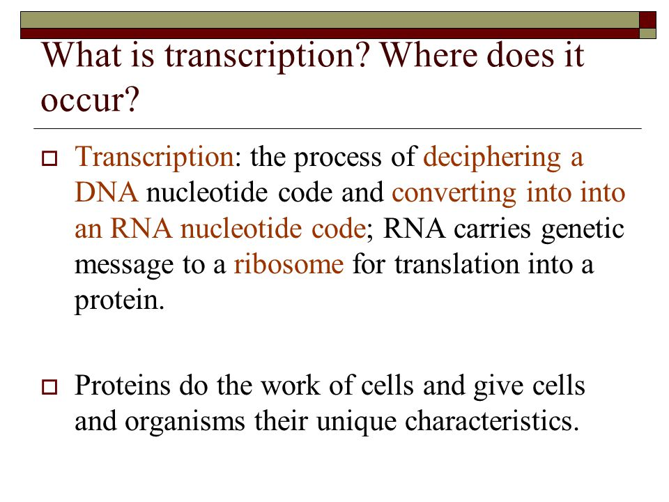 What is transcription Where does it occur