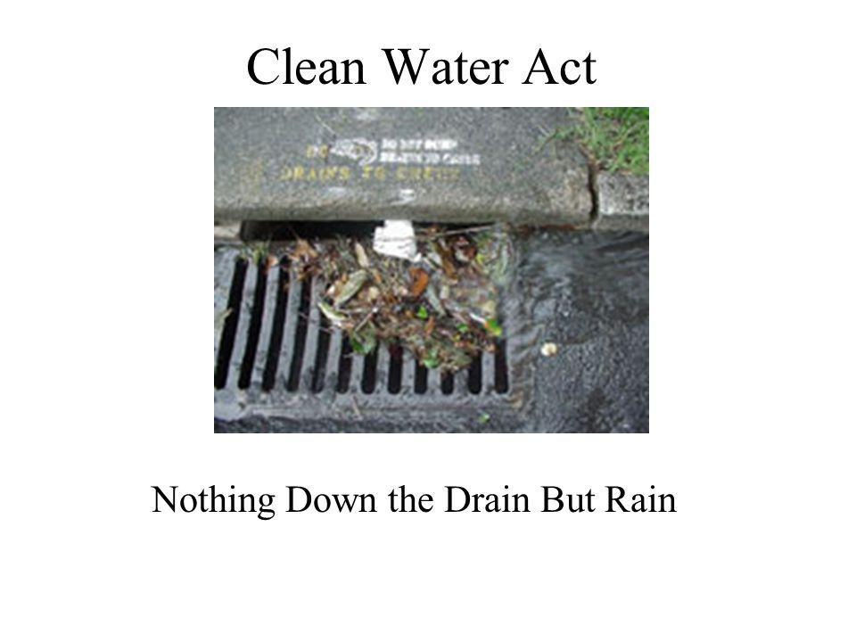 Nothing Down the Drain But Rain