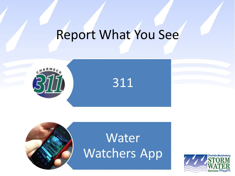 Report What You See 311 Water Watchers App
