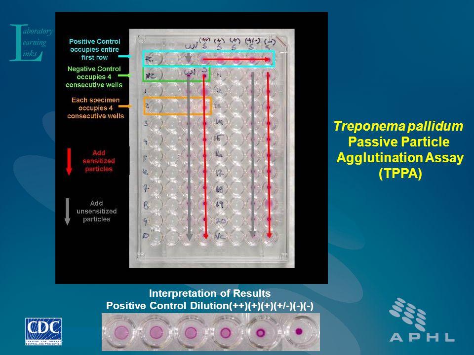Treponema pallidum Passive Particle Agglutination Assay (TPPA)