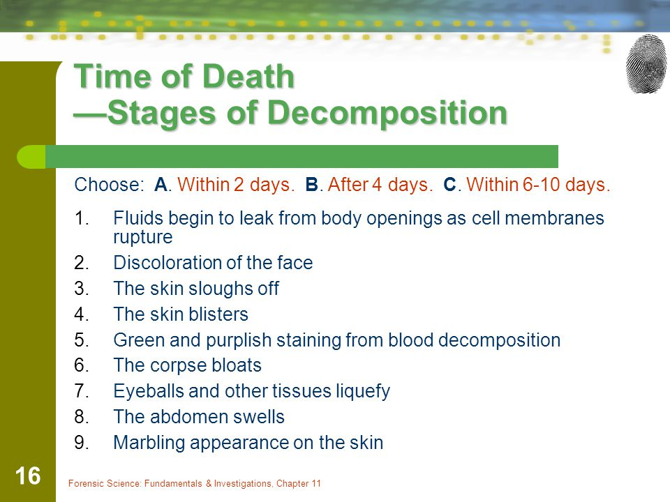 Time of Death —Stages of Decomposition