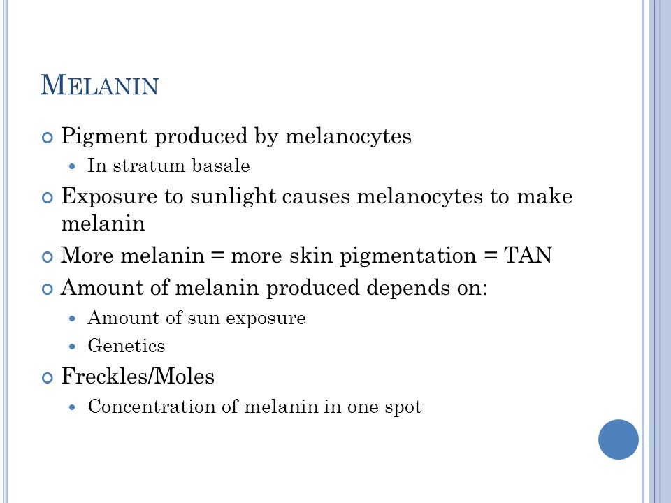 Melanin Pigment produced by melanocytes