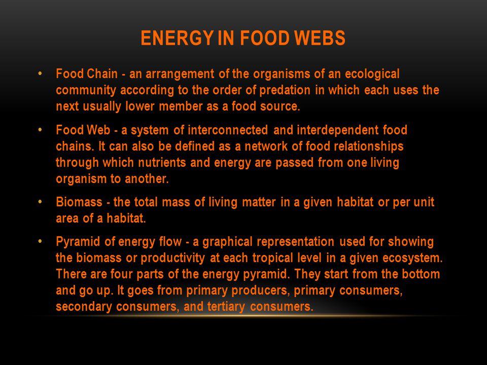 Energy in food webs