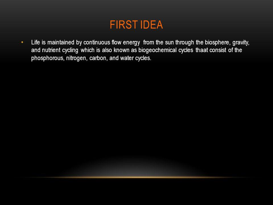 FIRST IDEA