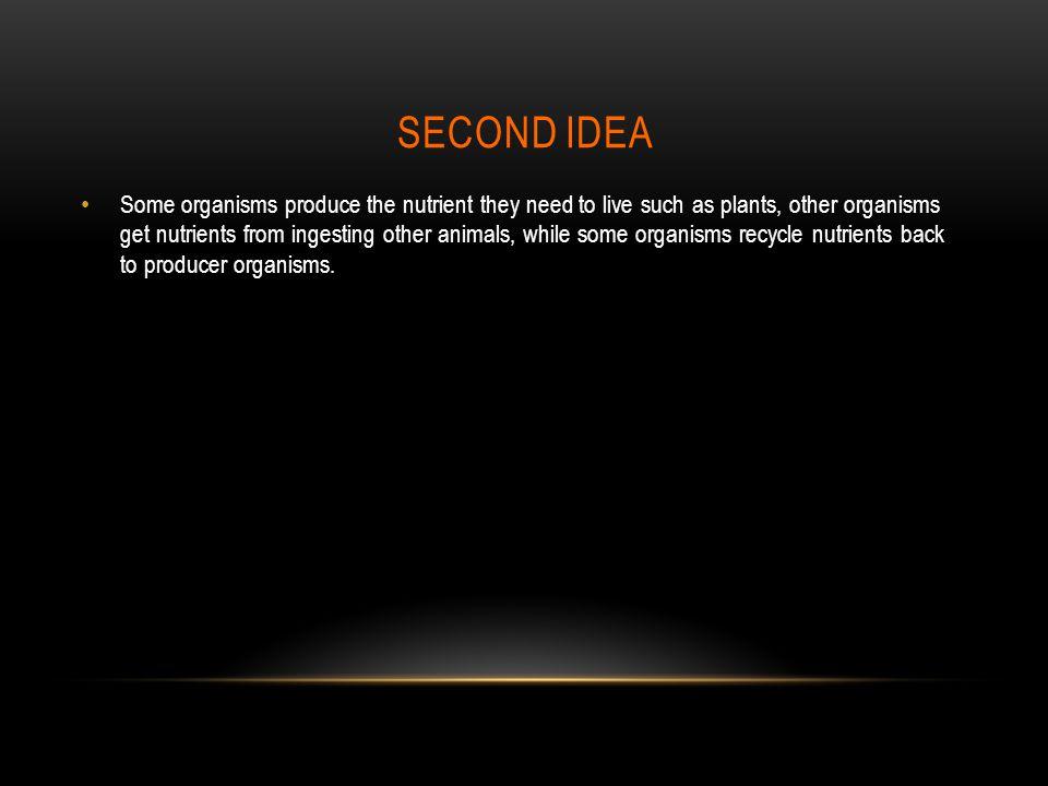 SECOND IDEA