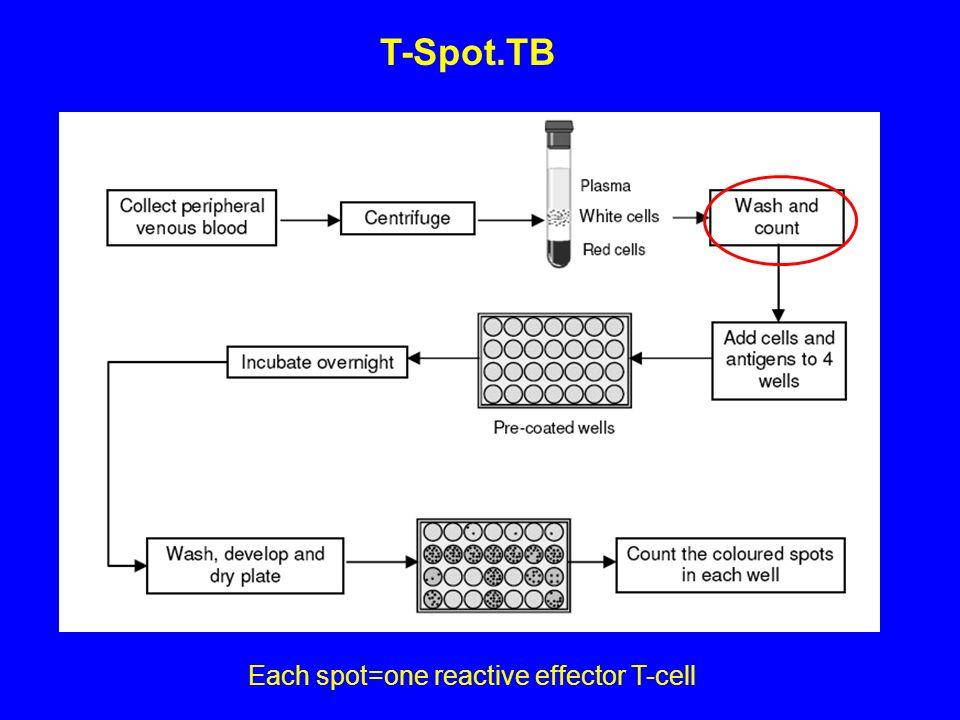 T-Spot.TB Each spot=one reactive effector T-cell