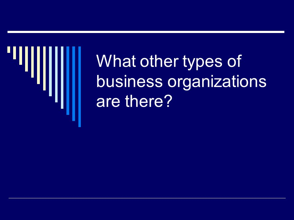 What other types of business organizations are there