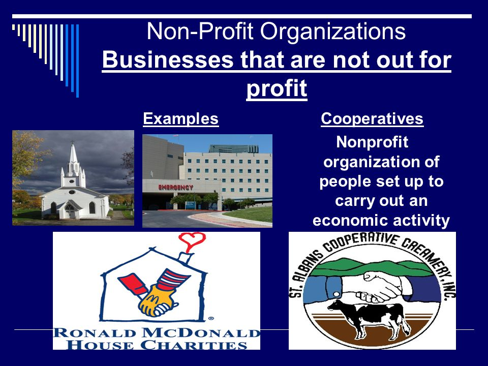 Non-Profit Organizations Businesses that are not out for profit