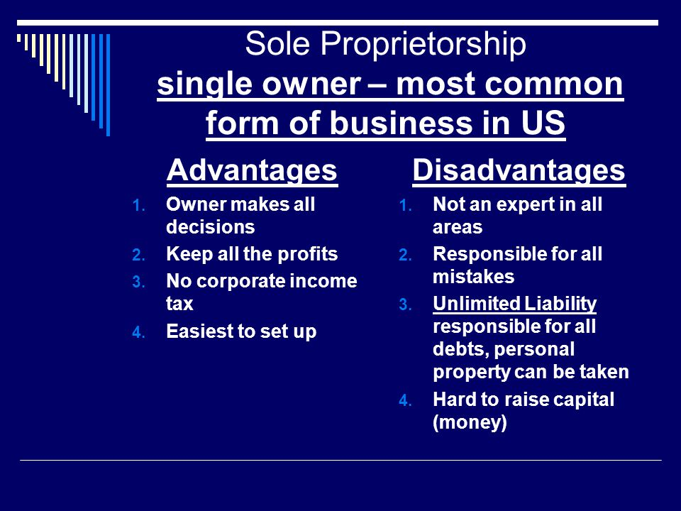 Sole Proprietorship single owner – most common form of business in US
